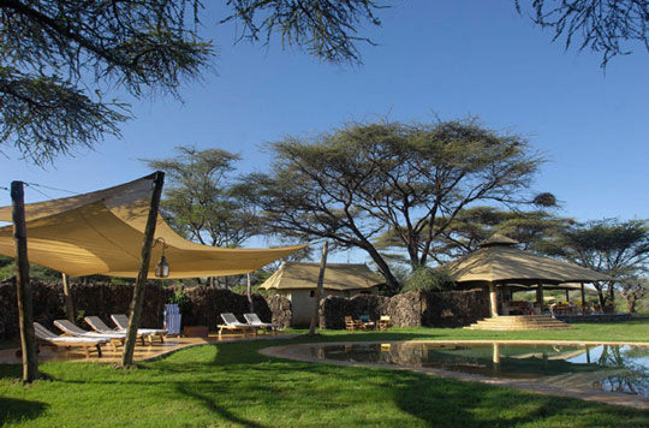 Safarivo.com : le bon choix du meilleur safari