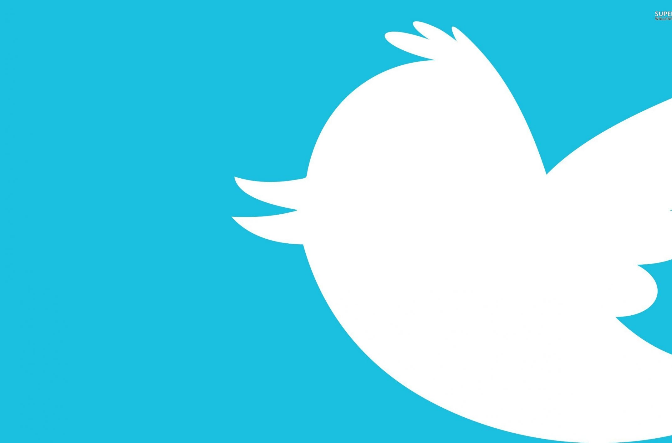 Followers Twitter : comment en gagner facilement et rapidement ?